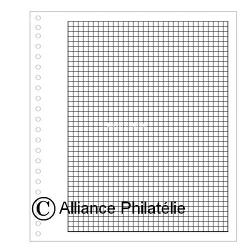 """Pages vierges """"SUPRA"""" : quadrillées (x50)"""